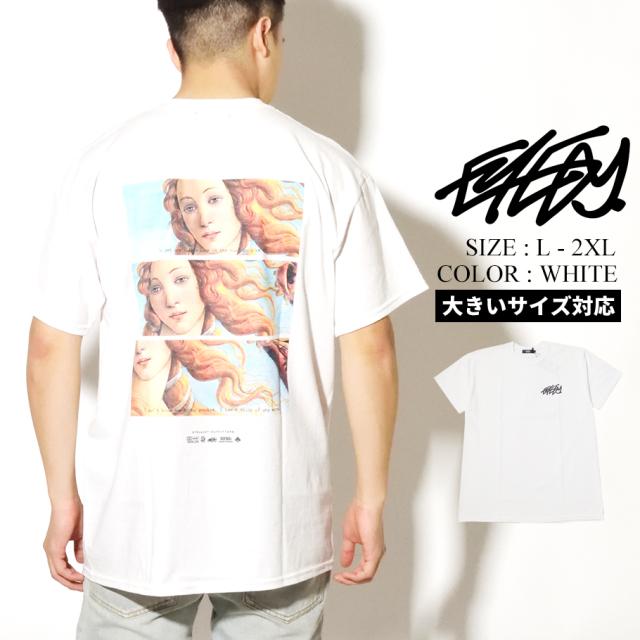 EYEDY アイディー 半袖 Tシャツ メンズ EYE-389SS