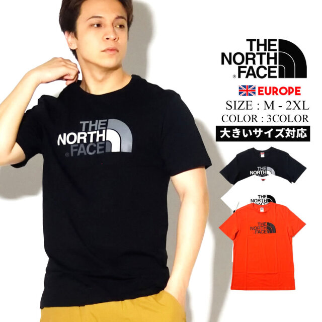 THE NORTH FACE ザ ノース フェイス Tシャツ メンズ 半袖 ロゴ EASY TEE NF0A2TX3