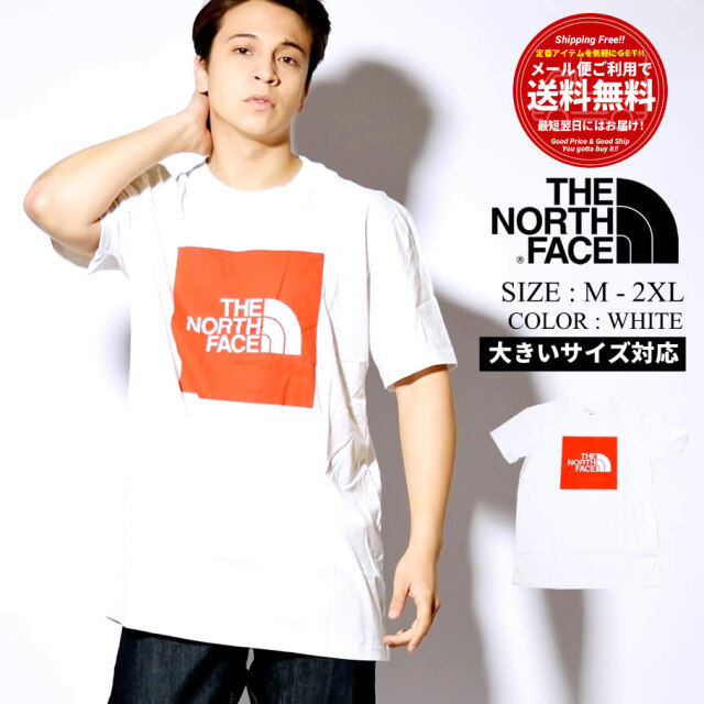 THE NORTH FACE ザ・ノースフェイス Tシャツ メンズ 半袖 USAモデル ショートスリーブニューボックスコットンティー NF0A4AAOLA9