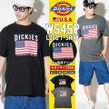 DICKIES ディッキーズ Tシャツ メンズ 半袖 大きいサイズ 国旗柄 星条旗 WS45P DKTT003