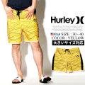 HURLEY ハーレー ボードショーツ 水着 メンズ サーフ系 ストリート系 スケーター ファッション AJ6979 HADT001