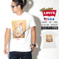 LEVI'S リーバイス Tシャツ メンズ チェック柄 カジュアル ストリート系 ファッション 22491-0603 服 通販