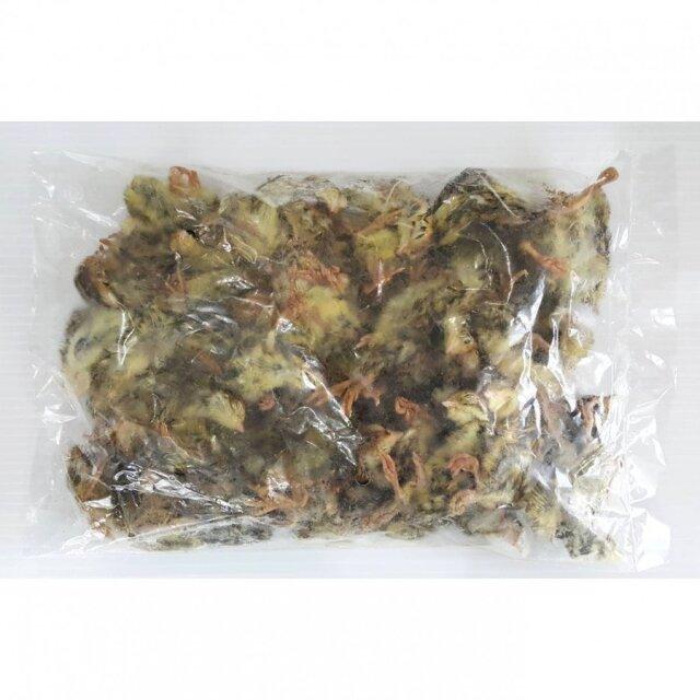 冷凍 国産雛ウズラ 500g 10パック (5kg) 1パック約70羽 爬虫類や猛禽類などのペットの餌