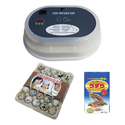 うずらの有精卵・小型自動孵卵器・餌 3点セット