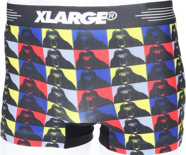 X-LARGE(エクストララージ)/テレビジョン(BLACK)