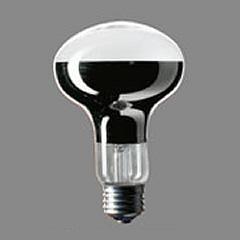 パナソニック レフ電球(屋内用) RF100V90W/D