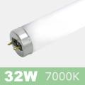 FLED32W-SD