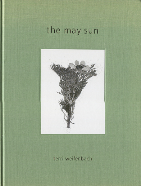 Terri Weifenbach: The May Sun