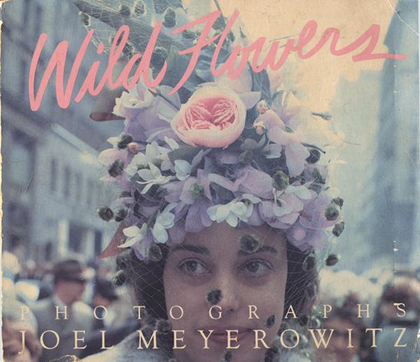 Joel Meyerowitz: Wild Flowers