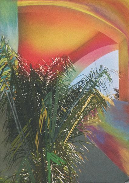 Sam Falls: Paint paper palms