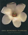 Harold Feinstein: One Hundred Flowers
