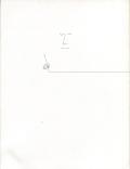 Saul Steinberg: The Line