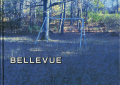 BELLEVUE -landscape photographs-