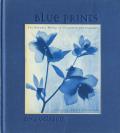 Zeva Oelbaum: Blue Prints