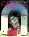 Cats in California