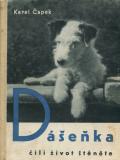 dasenka