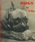 Ylla: DOGS