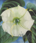 O'Keeffe One hundred flowers