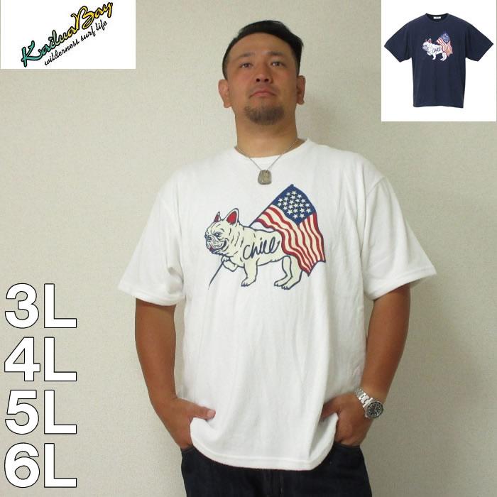 (本州四国九州送料無料)kailua Bay-ナノテック加工パイル半袖Tシャツ(メーカー取寄)3L 4L 5L 6L 制菌 パイル