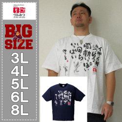 (10/31まで特別送料)ウルみつ-半袖Tシャツ(メーカー取寄)