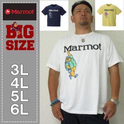 (5/31まで特別送料)Marmot-マーヴィンマーモット半袖Tシャツ(メーカー取寄)