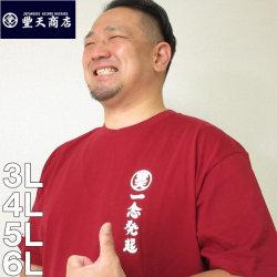(本州四国九州送料無料)大きいサイズ メンズ 豊天-一念発起豊天オマージュ半袖Tシャツ(メーカー取寄)ぶーでん/3L/4L/5L/6L