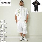 COLLINS-半袖ジャージセット(メーカー取寄)3L 4L 5L 6L 8L 半袖 短パン セットアップ