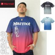 Marmot-グラデーションマーヴィン半袖Tシャツ(メーカー取寄)3L 4L 5L 6L マーモット Tシャツ ドライ