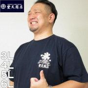 大きいサイズ メンズ 豊天-氷豊天オマージュ半袖Tシャツ(メーカー取寄)ぶーでん/3L/4L/5L/6L