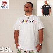 FRANKLIN&MARSHALL(フランクリンアンドマーシャル)カラフルロゴ コットン 半袖 Tシャツ 3XL フランクリン