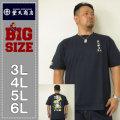 豊天-金魚半袖Tシャツ(メーカー取寄)