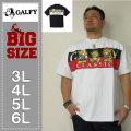 GALFY-刺繍半袖Tシャツ(メーカー取寄)