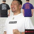 (本州四国九州送料無料)大きいサイズ メンズ Marmot-バロウ半袖Tシャツ(メーカー取寄)(マーモット)/3L/4L/5L/6L/紫外線カット