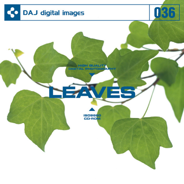 DAJ036 LEAVES 【葉百選】