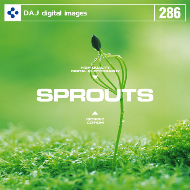 DAJ286 SPROUTS 【新芽】