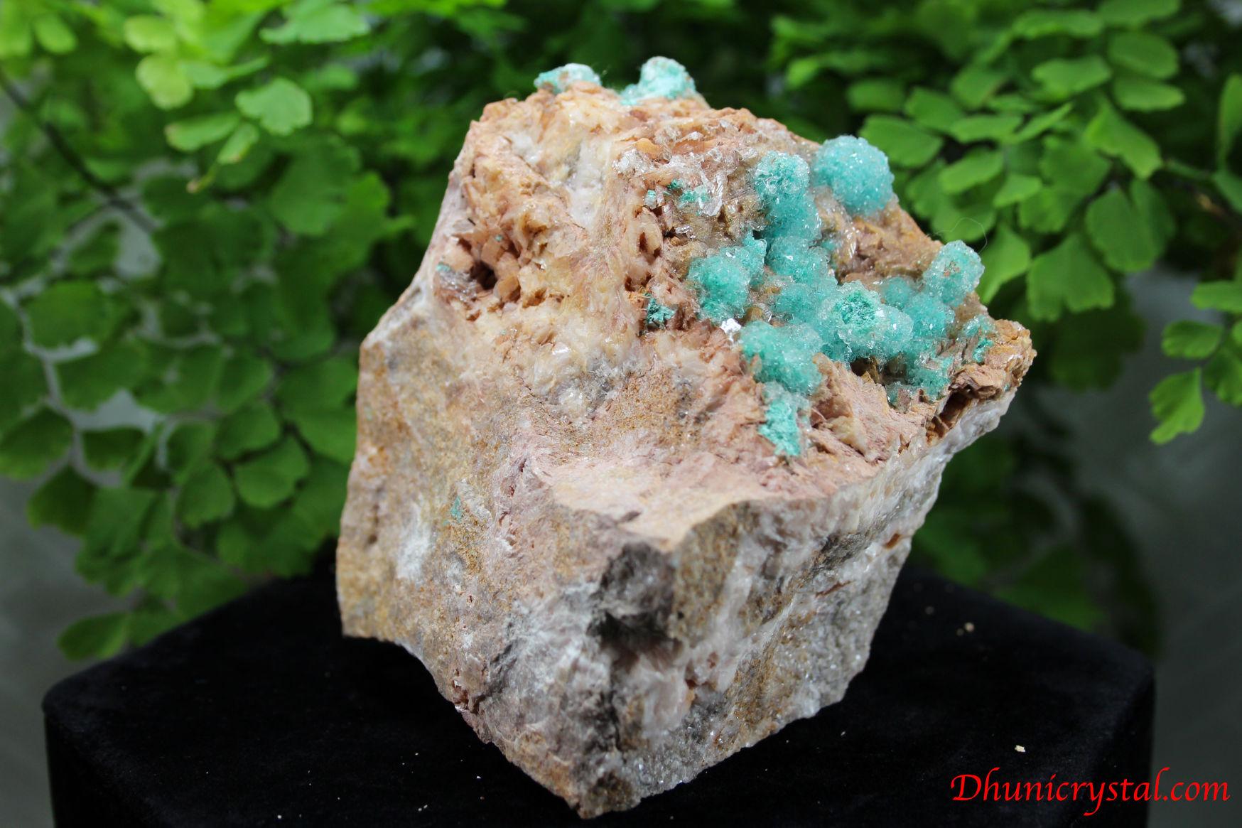 ローザサイト&セレナイト/共生鉱物(J262)