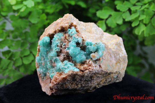 ローザサイト&セレナイト/共生鉱物(J261)