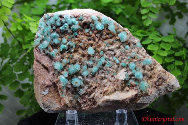 ローザサイト&セレナイト/共生鉱物(J263)