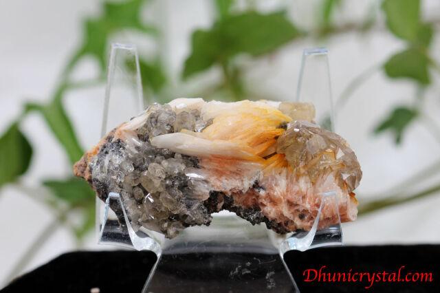 共生鉱物/セルサイト&バライト&ガレナ(Y387)