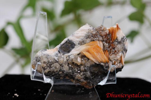 共生鉱物/セルサイト&バライト&ガレナ(Y389)