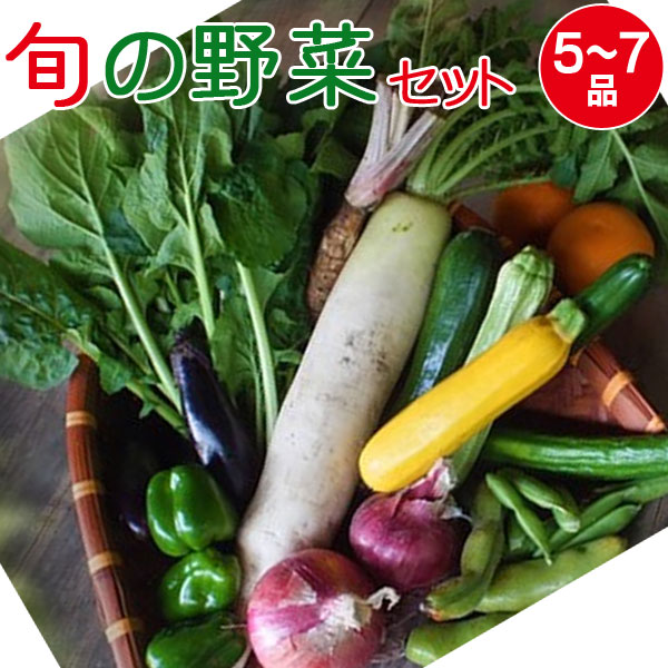 産地直送 旬の野菜セット(5~7品目)