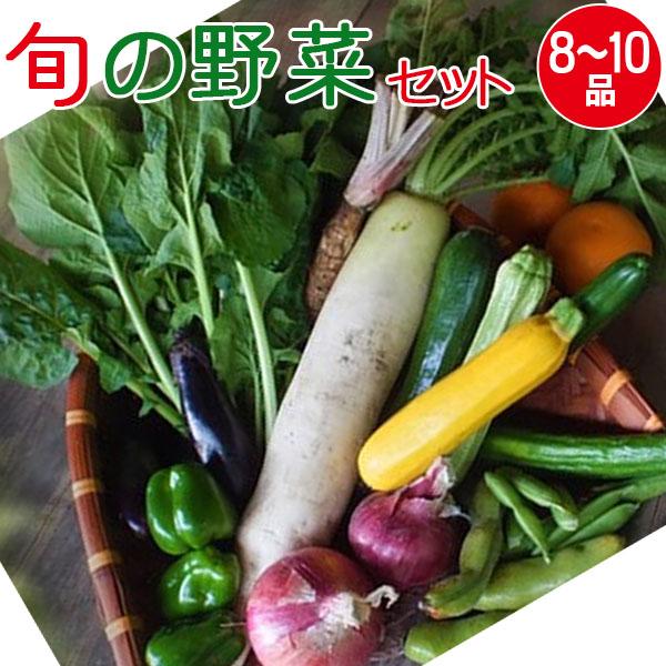 産地直送 旬の野菜セット+果物1品(9~13品目)