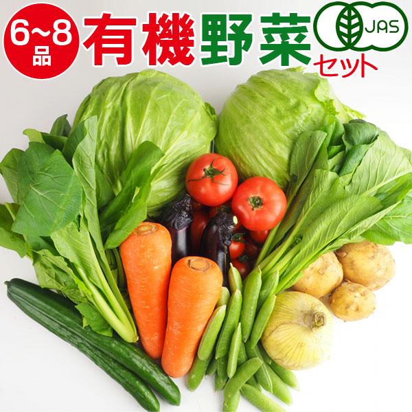 産地直送 有機野菜セット(6~8品目