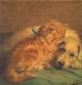 5枚組ペーパーナプキン*Dog and Cat