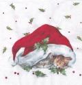 5枚組ペーパーナプキン*クリスマスキャッツ【B】