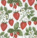 5枚組ペーパーナプキン*Delicious Strawberries