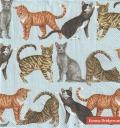 5枚組ペーパーナプキン*CATS