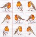 5枚組ペーパーナプキン*Robins Family
