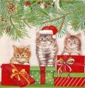 5枚組ペーパーナプキン*Three Cats
