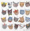 5枚組ペーパーナプキン*Funny Cats